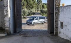 Mercedes-Mercedes bedrijfs wagens-1